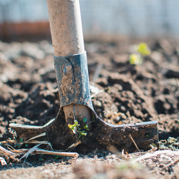 Shovel | Giving Back - One Tree Planted - The Wanderful Soul